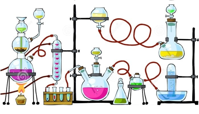 4.sınıf fen bilimleri