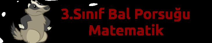 3.sınıf Bal Porsuğu Matematik